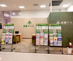 保険テラス イオン南陽店の店舗写真